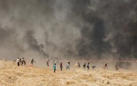 (تصاویر) تلاش برای خاموش کردن آتش در زمین های کشاورزی شمال شرق سوریه