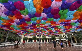 (تصاویر) چترهایی برای فرار از گرما در خیابانی در فرانسه