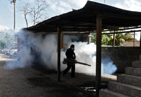 (تصاویر) تلاش برای مبارزه با تب دنگو در تگوسیگالپای هندوراس پس از 44 کشته در سال جاری