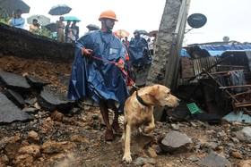 (تصاویر) نیروهای امدادی در بمبئی هند در حال جستجوی بازماندگان از حادثه فروریختن خانه ای در این شهر