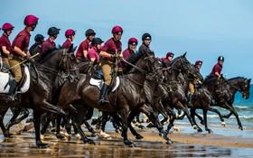 (تصاویر) تمرین گاردهای نظامی اسب سوار در انگلیس در اردگاه های تابستانی