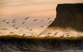 (تصاویر) عکس ساحل نا آرام در انگلیس