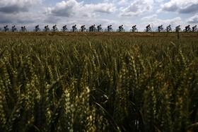 (تصاویر) مسابقه دوچرخه سواری در بلژیک