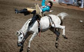 (تصاویر) مسابقات اسب سواری رودئو در کالیگاری کانادا