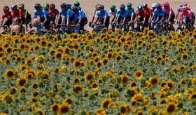 (تصاویر) مسابقه دوچرخه سواری دور فرانسه