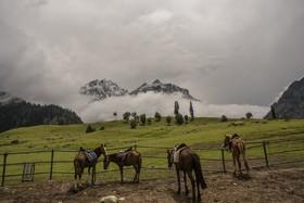 (تصاویر) یخچال های تاجیواس در منطقه هیمالیایی سونامرگ در پاکستان که در اثر گرمایش زمین در حال ذوب شدن است