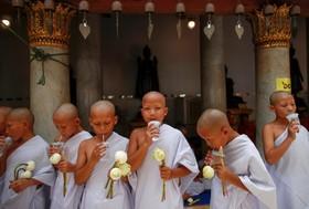 (تصاویر) طلبه های معبد بودایی در بانکوک تایلند