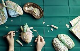 (تصاویر) کاترین رودگاست از کاغذ مدل هایی می سازد که در این بخش اجزای مهم بدن انسان را می سازد این کار به سفارش دانشگاه علم و تکنولوژی زوریخ و با کاغذ نقشه زوریخ انجام شده است.
