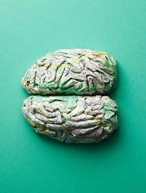 (تصاویر) ماکت مغز انسان که توسط نقشه زوریخ باز سازی شده است
