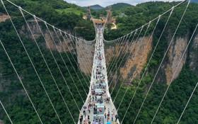 (تصاویر) پل شیشه ای معلق در منطقه هنان چین که بلند ترین پل معلق شیشه ای پیاده رو در جهان است
