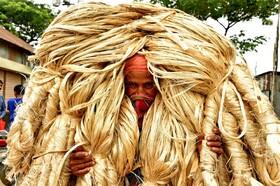(تصاویر) بنگلادش کارگری در حال حمل کنف در بازار