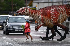 (تصاویر) فریا اسمیت سه ساله دایناسوری شبیه سازی شده را از خیابانی در اسکاتلند در ادینبورگ هدایت می کند این دایناسور بخشی از نمایش یک شرکت استرالیایی است