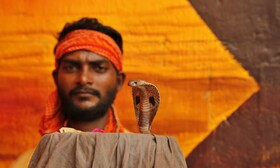 (تصاویر) مراسم مذهبی هندوها در پرایاگراژ  موسوم به ناگ پانچامی