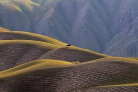(تصاویر)سواری در کوه پایه های خینجیانگ در چین