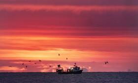 (تصاویر) طلوع آفتاب در سواحل انگلیس