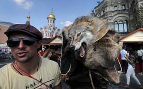 (تصاویر) فروش پوست گرگ و خرس در خیابانی در مسکو روسیه