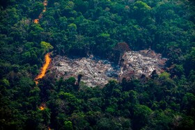 (تصاویر) نابودی بخشی از جنگل در ایالت پارا در برزیل