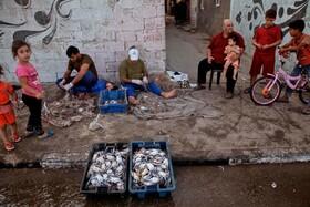 (تصاویر) سید خرچنگ در غزه و ماهیگیران فلسطینی که در حال پاکسازی تور صید خویشند