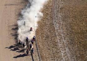 (تصاویر) مسابقه اسب سواری در بردزویل در کوئینزلند استرالیا
