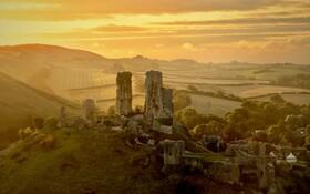 (تصاویر) تصویری از آغاز پاییز در دورست انگلیس