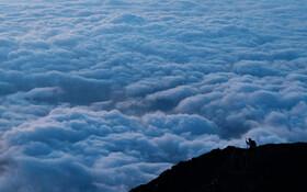 (تصاویر) کوهنوردی در راه فتح قله فیحی عکسی از ابرهای زیرپایش گرفته است