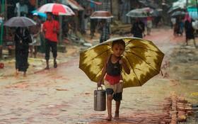 (تصاویر) کودک مسلمان روهینگایا در بگلادش در حال حمل غذا زیرباران استوایی