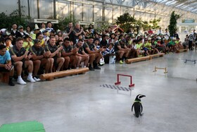 (تصاویر) دیدار بازیکنان تیم های راگبی که در مسابقات بین المللی راگبی در توکیو شرکت کرده اند از پارک کاگهگاوا که بازدید کنندگان می توانند با جانوران و گیاهان مختلف آشنا شوند و از آن ها دیدن کنند را