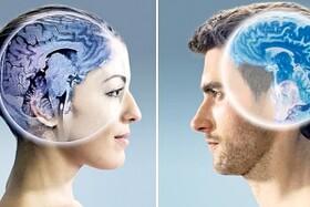مغز زنان از مردان جوان تر است