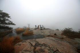 (تصاویر) مه در پارکی در نیویورک آمریکا