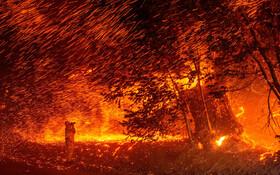 (تصاویر) صحنه ای از آتش سوزی جنگل ها در کالیفرنیای آمریکا