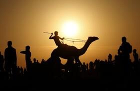 (تصاویر) مسابقه شترسواری در فرودگاه تعطیل شده در رفح در غزه
