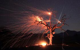 (تصاویر) آتش سوزی در کالیفرنیا ادامه دارد