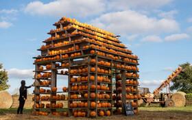 (تصاویر) خانه کدویی ساخته شده از هزار عدد کدو