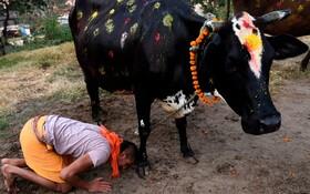 (تصاویر) جشن دیوالی در کاتماندو نپال