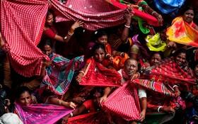 (تصاویر) مریدان هندو در معبد مادان موهان در کلکته در حال جمع آوری برنج های تبرک شده در جشنواره ای مذهبی