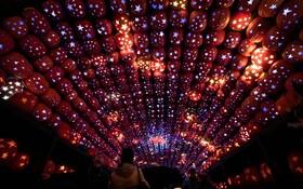 (تصاویر) نمایی از اثری نوری در هادسون نیویورک با استفاده از هفت هزار فانوس