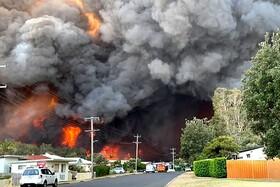 (تصاویر) آتش سوزی در جنگل های استرالیا