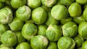 سبزیجات تلخ