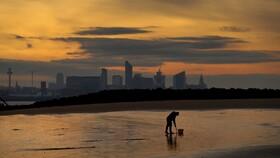 (تصاویر) ماهیگیری در حال جمع آوری طعمه برای ماهیگیری در انگلیس