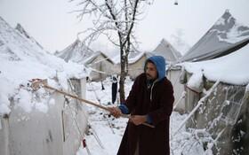 (تصاویر) اردوگاه مهاجران آواره در بوسنی هرزگوین