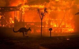 (تصاویر) آتش سوزی در استرالیا