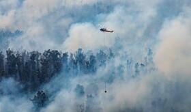 (تصاویر) مقابله با آتش سوزی در استرالیا
