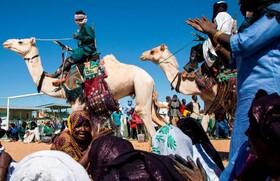 (تصاویر) نمایش شتر سواری در مسابقات دو ماراتن در نیجریه