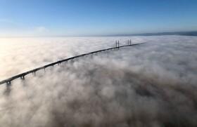 (تصاویر) پل اتصال ویلز به انگلیس موسوم به پل شاهزاده ویلز در مه