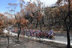(تصاویر) مسابقه دوچرخه سواری در استرالیا و گذشتن شرکت کنندگان از میان یک جنگل سوخته در آتش سوزی های اخیر در این کشور