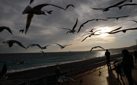 (تصاویر) ساحل رویرا در نیس فرانسه
