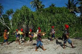 (تصاویر) شرکت کنندگان در جشنواره فصل برداشت در اندونزی