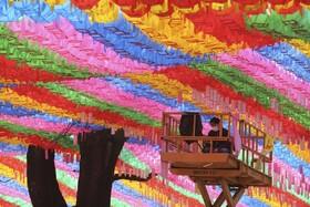 (تصاویر) سئول کره جنوبی مردی با مسک در حال کار تزئین خیابان برای جشن تولد بودا