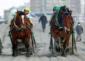 (تصاویر) مسابقه اسب سواری در ژاپن