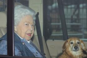 (تصاویر) ملکه انگلیس در حال عبور از خیابانی در انگلیس در شرایط قرنطینه خانگلی در لندن